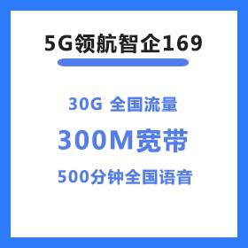 5G领航智企169套餐