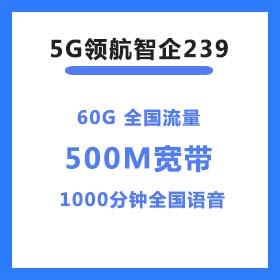 5G领航惠企239套餐