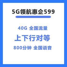 5G领航惠企599套餐